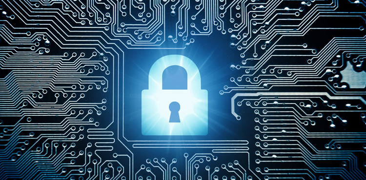 Cyber Security Lock – IDShield Lawsuit